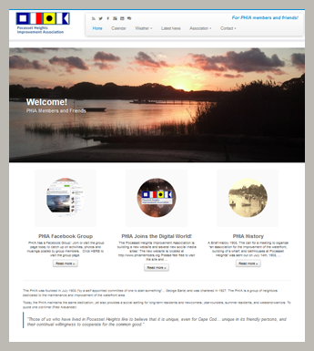 responsive browser view